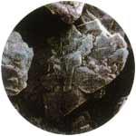 重曹ブラストメンテナンスXL顕微鏡写真
